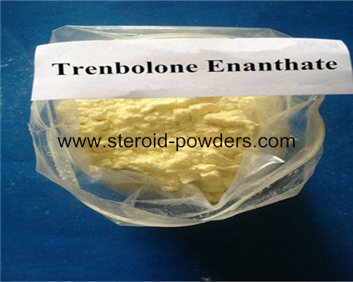 half life of boldenone undecylenate