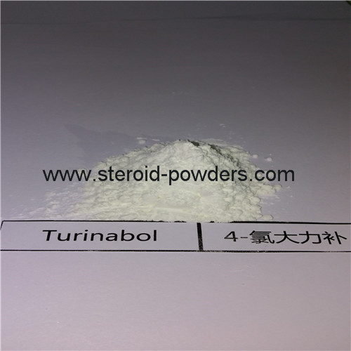 4-Chlorodehydromethyltestosterone (Turinabol)