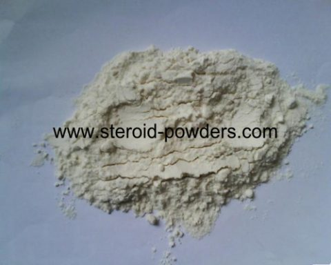 High Quality Kidney Bean Extract